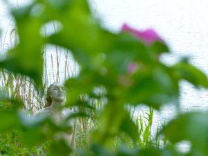 Nixe mit Heckenrosenblüte