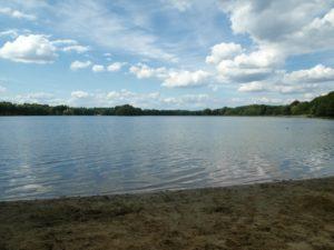 Der See Schilf, Wasser, Wolken